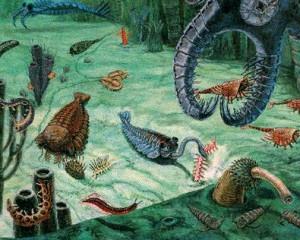 The Proterozoic-Cambrian boundary
