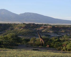 Early Human Paleolandscapes at Olduvai Gorge